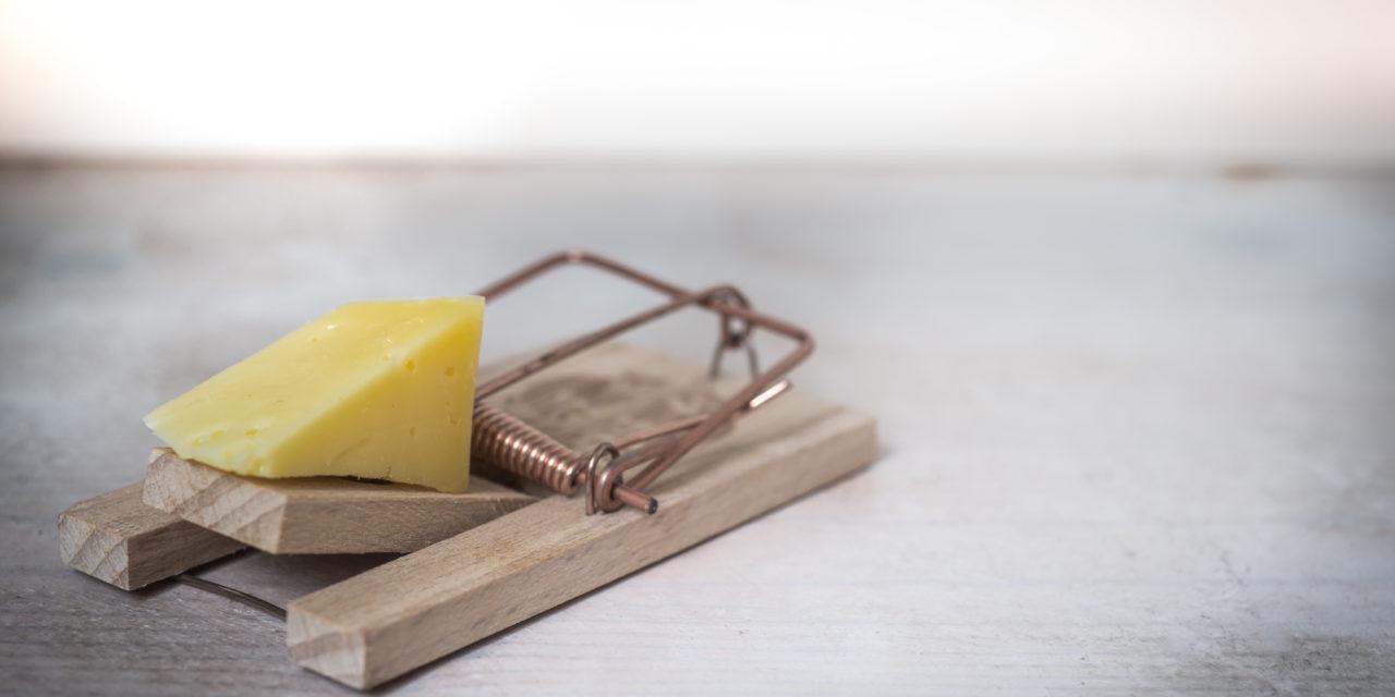 https://dlaignite.com/wp-content/uploads/2017/12/mouse-trap-cheese-device-trap-633881-1280x640.jpeg