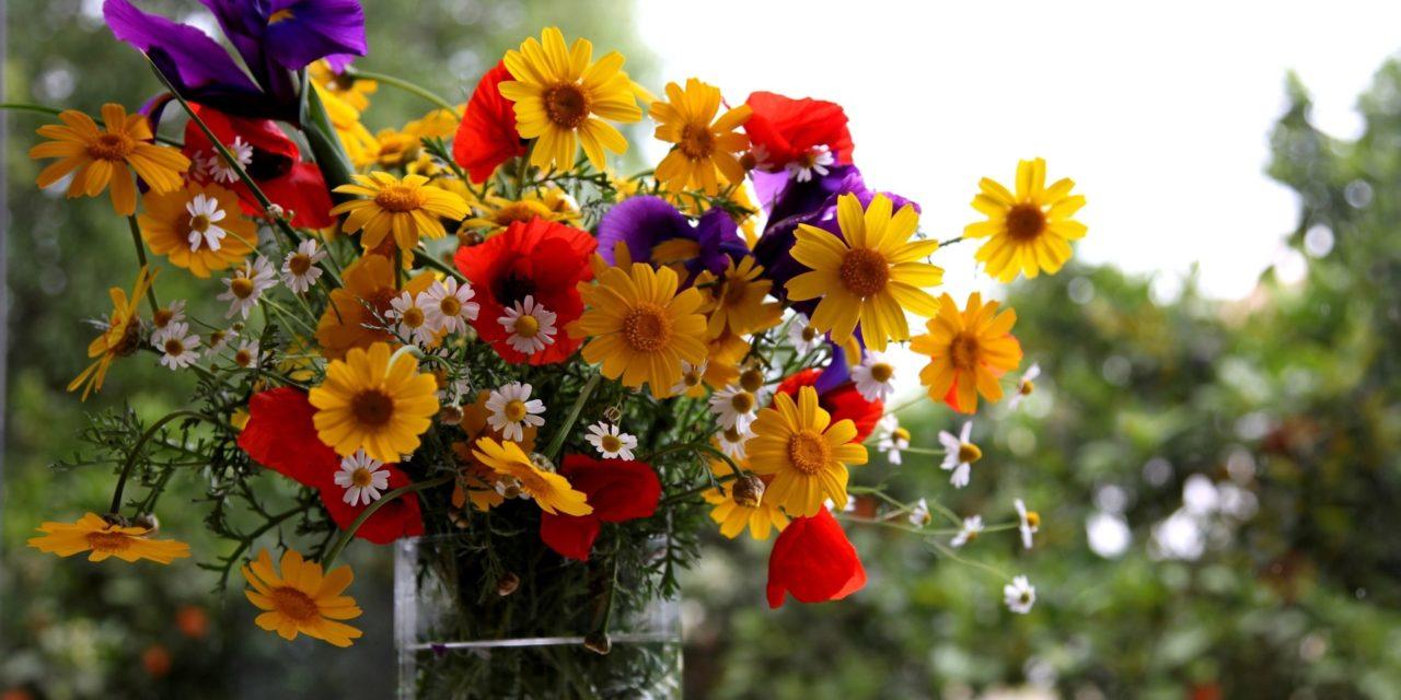 https://dlaignite.com/wp-content/uploads/2018/09/flowers-1280x640.jpg