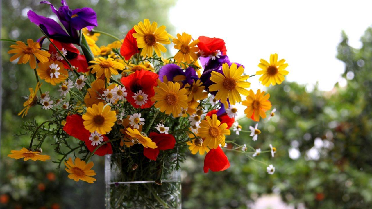 https://dlaignite.com/wp-content/uploads/2018/09/flowers-1280x720.jpg